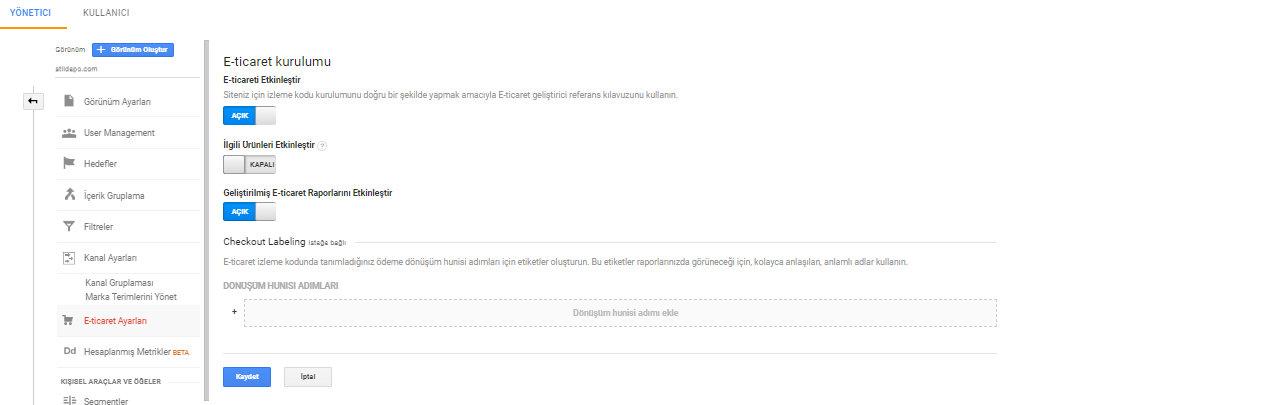 google analytics e-ticaret kurulumu